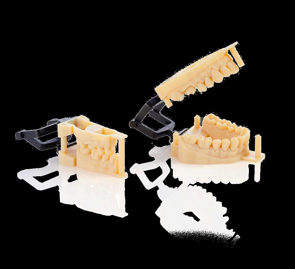 Dent prime print