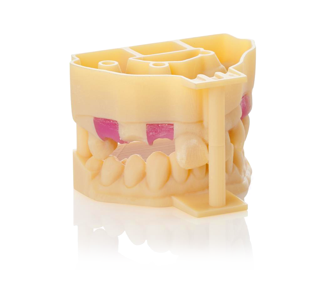 Dental Selection print